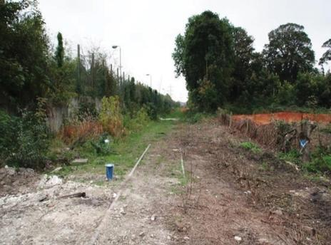 Clearing vegetation and rails along the disused railway lines
