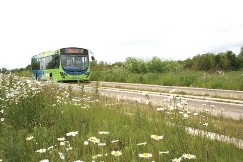 Cambridge busway still leading the way