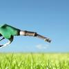 New targets aim to double use of biofuels in transport sector