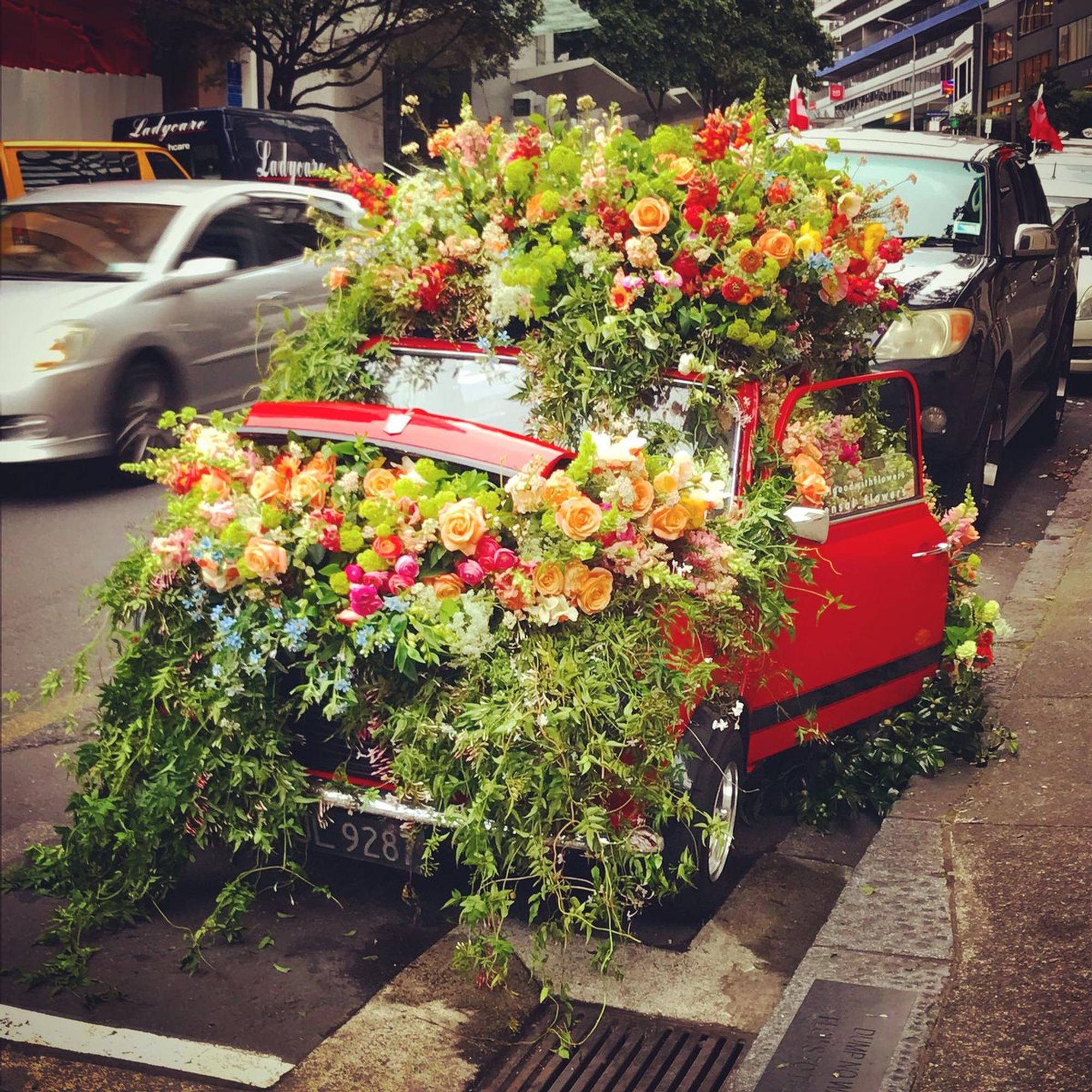 A Mini was converted into a flower garden in Auckland, New Zealand