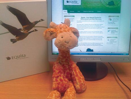 Equita's giraffes boost funds for cancer charity